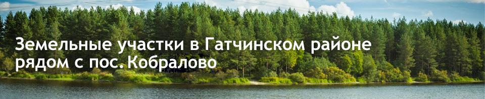 Земельные участки в Гатчинском районе  рядом с пос. Кобралово
